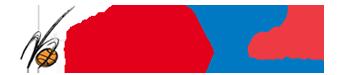 pallts-logo22